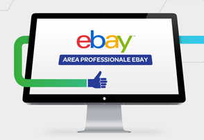 eBay Area Professionale